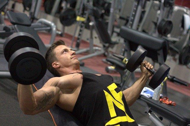 Fitness Muskelaufbau